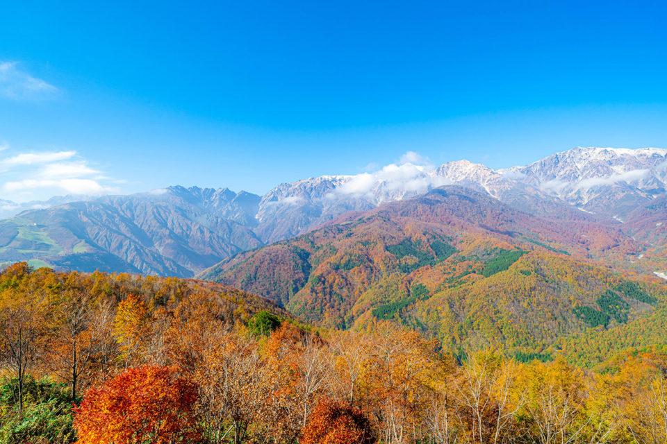 三段紅葉が映える白馬の秋